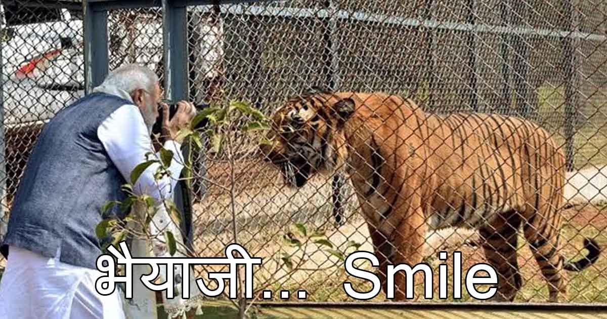 http://www.meranews.com/backend/main_imgs/11_maharashtra-government-formation-bjp-ncp-hilarious-memes-go_9.jpg?92