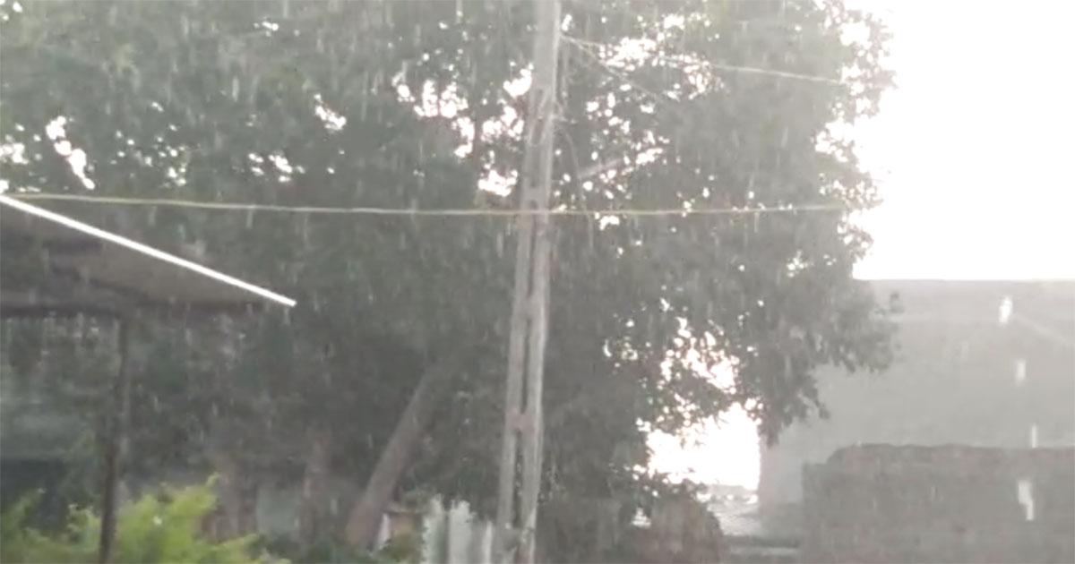 Amreli rain
