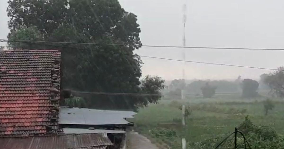 Rain in Aravalli