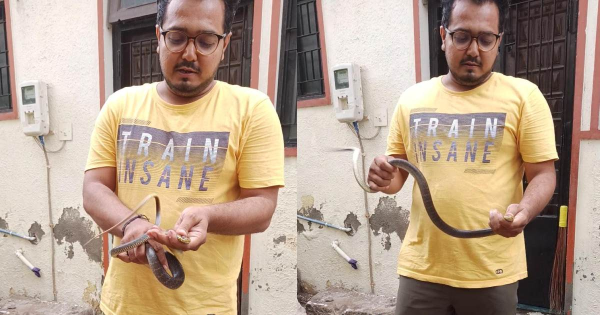 http://www.meranews.com/backend/main_imgs/SnakeRescueamd_ahmedabad-lal-darwaja-krishna-temple-snake-rescue-animal-life-care-news_0.jpg?5