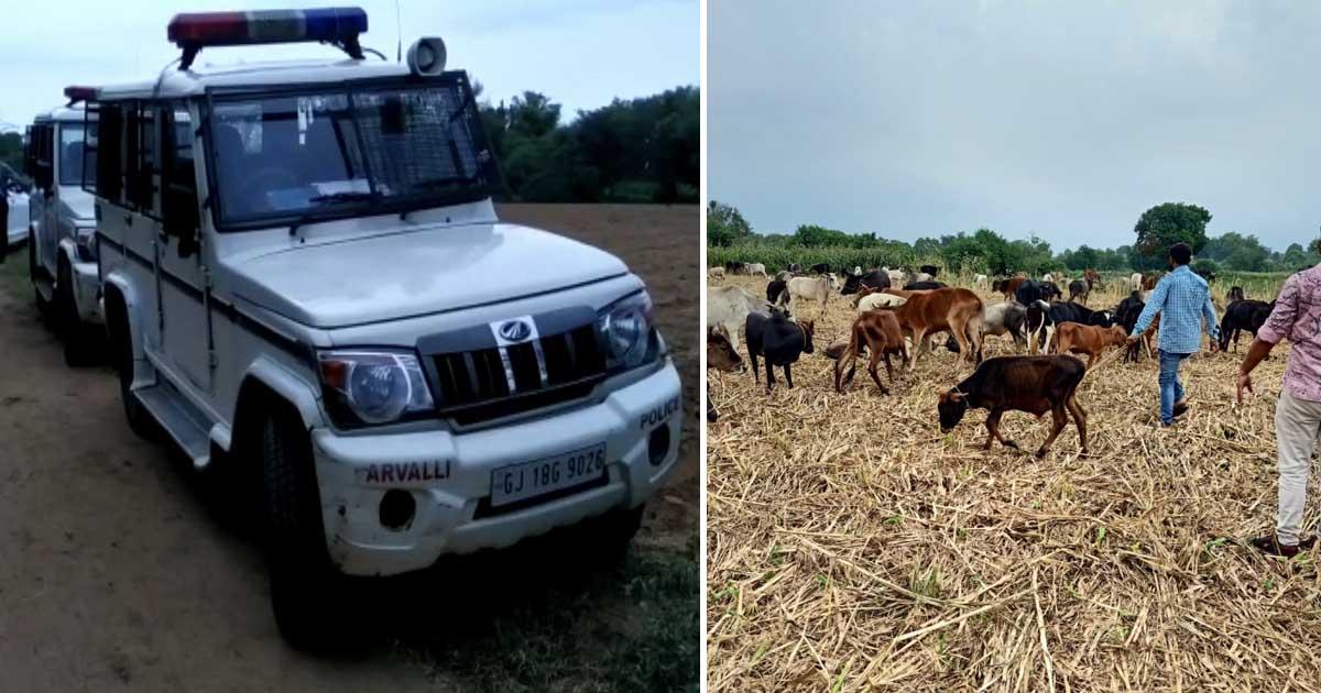 http://www.meranews.com/backend/main_imgs/aravallipolice_aravalli-police-gujarat-police-save-animal-save-environme_0.jpg?92