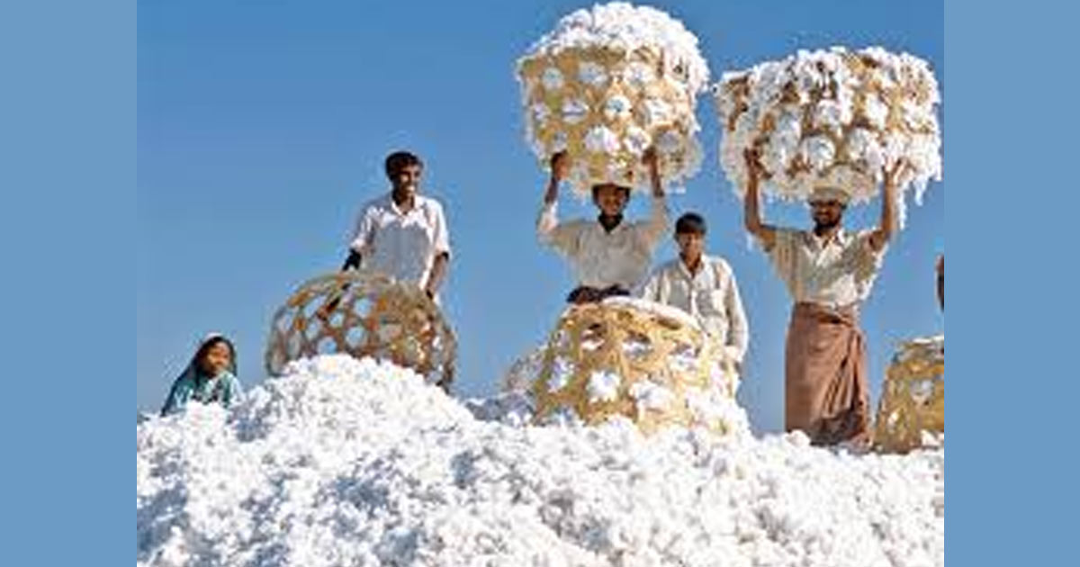 http://www.meranews.com/backend/main_imgs/cotton_the-indian-rupee-market-and-the-textile-industry-could-benefit_0.jpg?61