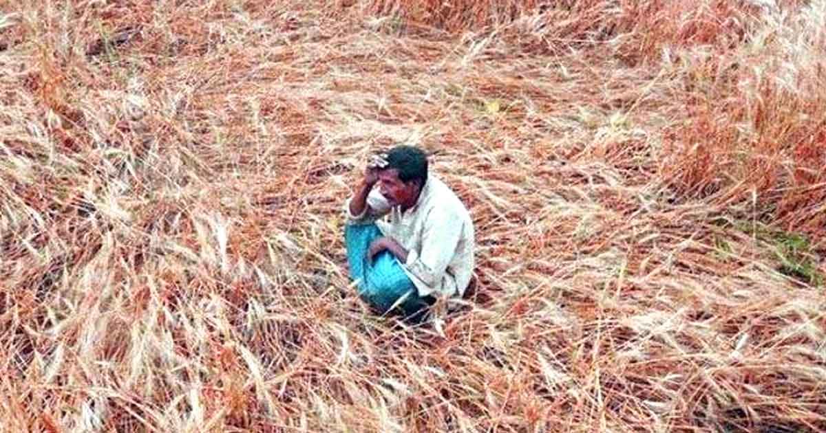 http://www.meranews.com/backend/main_imgs/farmerindia_pm-kisan-sanman-nidhi-yojana-farmers-received-money-and-los_0.jpg?90