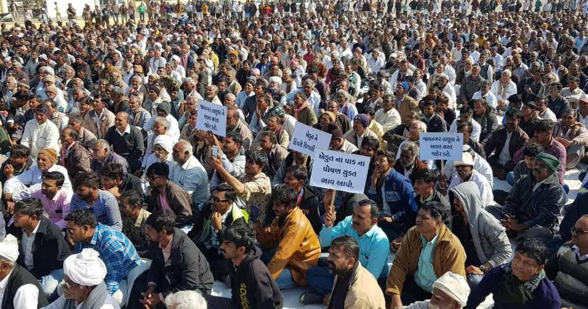 http://www.meranews.com/backend/main_imgs/farmerrally-1(1)_jamnagar-farmers-warn-government-wants-it-to-come-clean-on_0.jpg?66