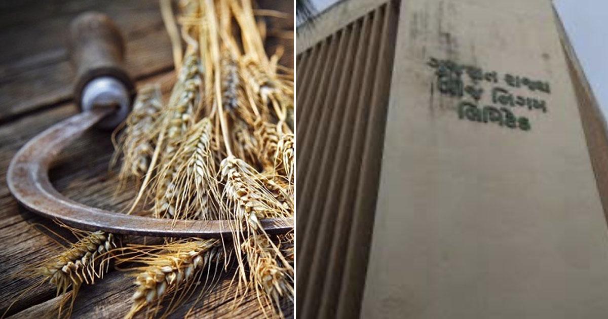 http://www.meranews.com/backend/main_imgs/farmersgujaratbijbhavan_carelessness-of-gujarat-rajya-beej-nigam-farmers-are-suffer_0.jpg?15