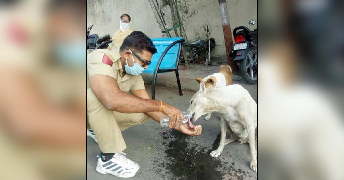 http://www.meranews.com/backend/main_imgs/gujarat-police_gujarat-police-gujarat-cm-vijay-rupani-vishnu-chauhan-corona_0.jpg?8?75