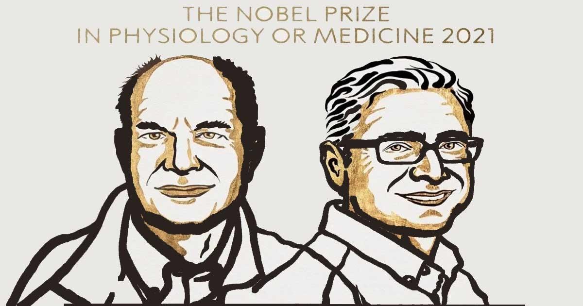 international Nobel prize