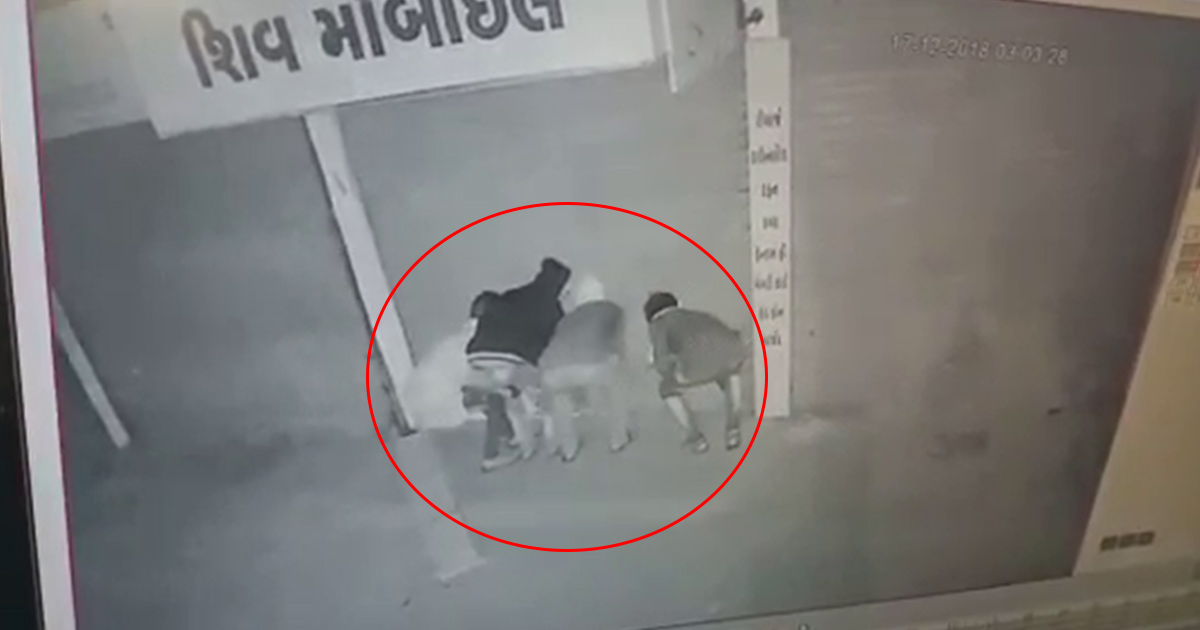http://www.meranews.com/backend/main_imgs/rajkot-cctv_10-stores-robbed-in-modasa-cctv-camera-capture-the-act_0.jpg?29