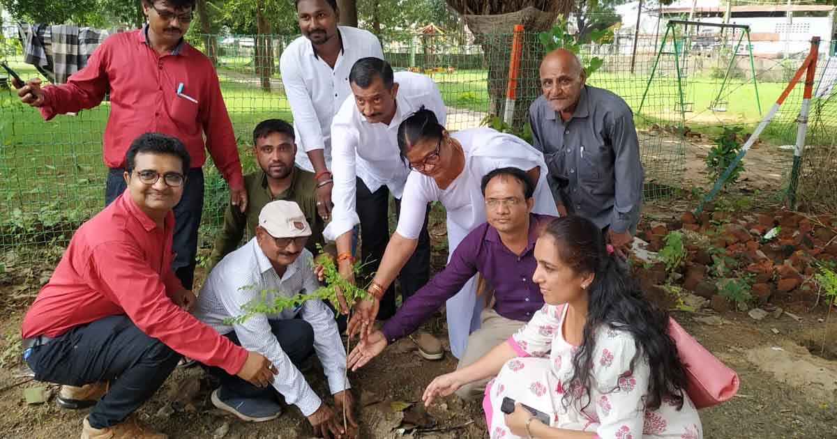 http://www.meranews.com/backend/main_imgs/saragwatree_50-saragva-tree-grown-by-dhansura-district-health-office_0.jpg?74