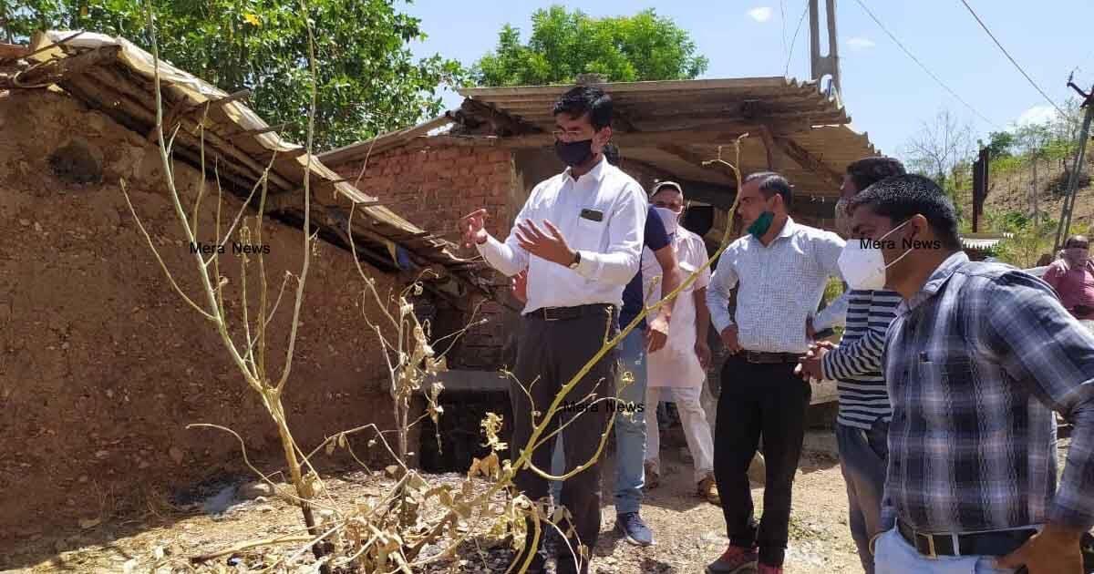 http://www.meranews.com/backend/main_imgs/tidaravallil_corona-in-aravalli-farmers-of-aravalli-meghraj-bhiloda-farmer_1.jpg?58