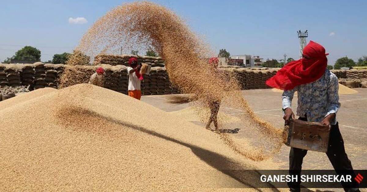 http://www.meranews.com/backend/main_imgs/wheat_wheat-prices-black-sea-business-news-gujarati_0.jpg?65